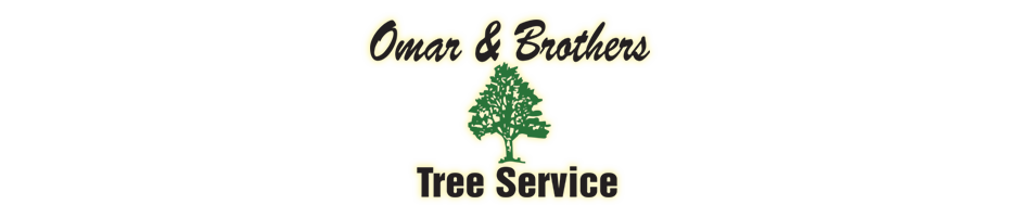Omar and Brothers Tree Service